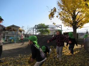 いちょうの葉っぱをまく